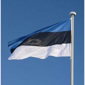 Lipp Eesti 10m mastile 165*259 õhem
